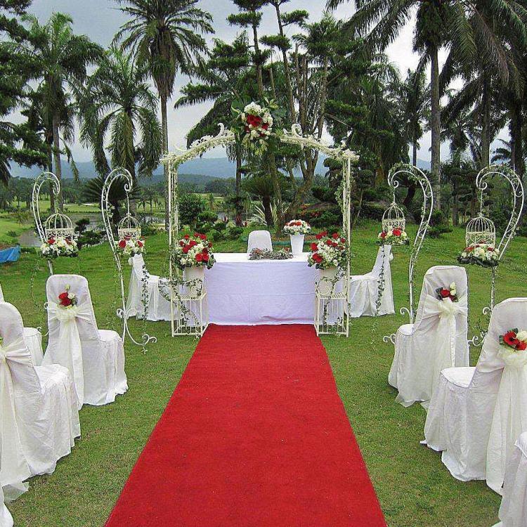 pesta pernikahan adat bali